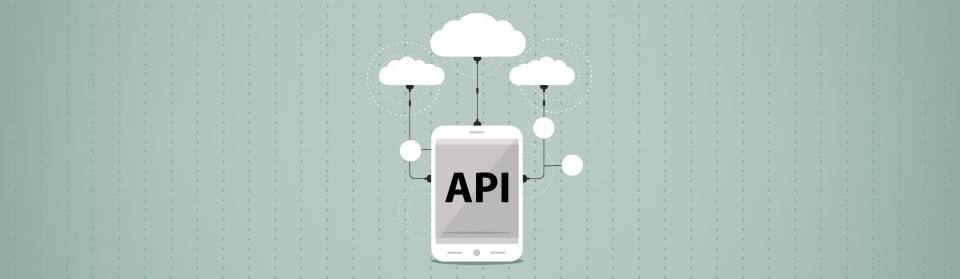 The Advantages of Integrating API's with Other Services