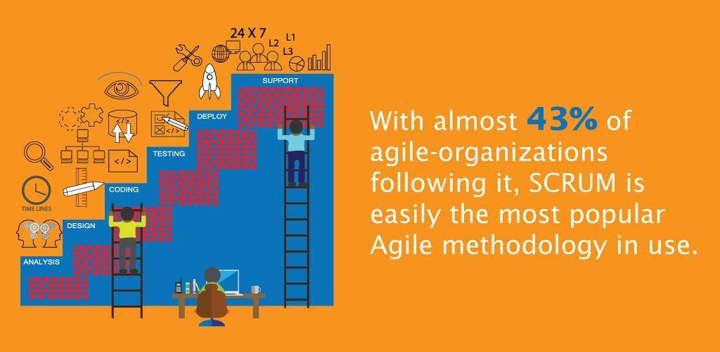 Agile Organizations SCRUM