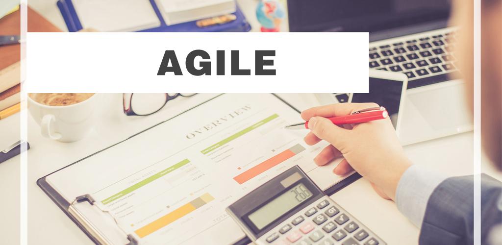 Agile Methodology can optimize web development